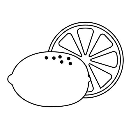 fresh lemon citrus fruit vector illustration design Illustration