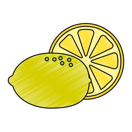 fresh lemon citrus fruit vector illustration design Vectores