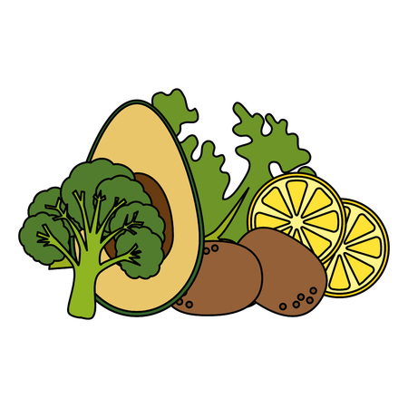 dish with fresh lettuce and avocados vector illustration design