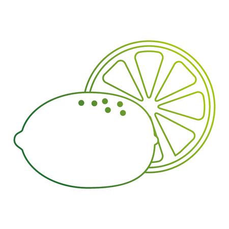 fresh lemon citrus fruit vector illustration design Illusztráció