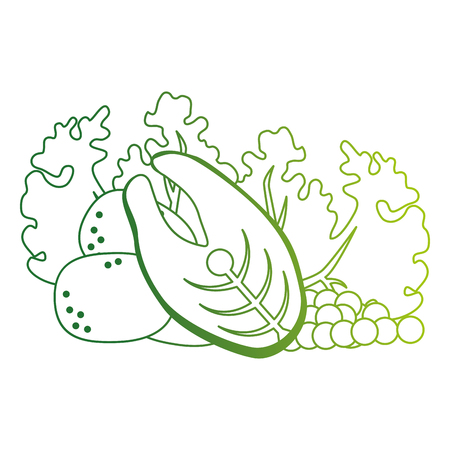 fresh lettuce with salmon and potatoes healthy food vector illustration design