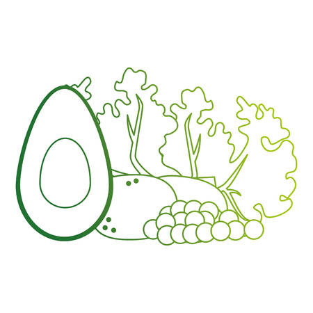 fresh lettuce with avocado and potatoes healthy food vector illustration Standard-Bild - 112283028