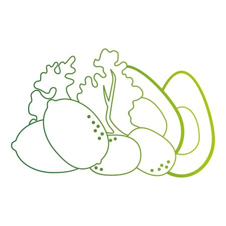 fresh lettuce with avocado and potatoes healthy food vector illustration Standard-Bild - 112283029