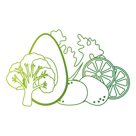 fresh lettuce with avocado and potatoes healthy food vector illustration Standard-Bild - 112283031