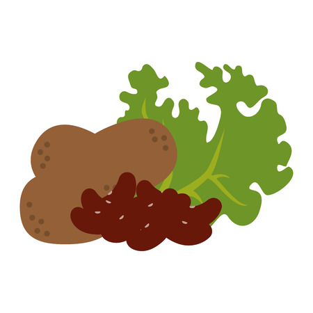 fresh lettuce with beans and potatoes healthy food vector illustration design 일러스트