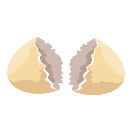 shell egg cracked isolated icon vector illustration design Illustration
