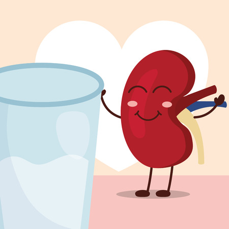 world kidney day happy cartoon organ and water vector illustration