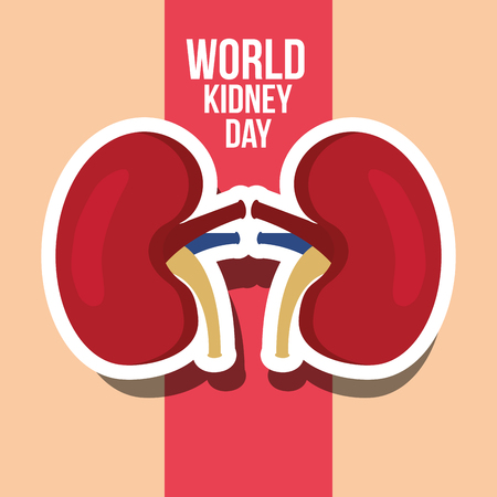world kidney day card medical campaign vector illustration Vectores