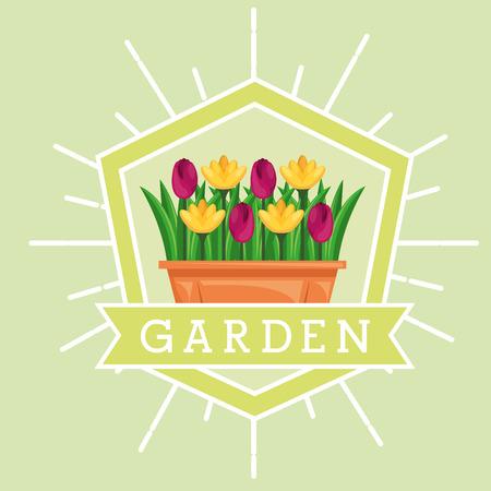 garden potted flowers decoration emblem vector illustration