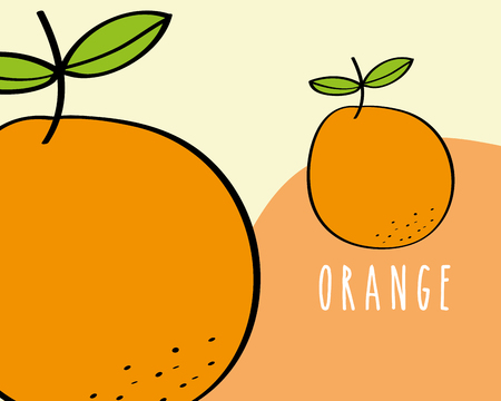 oranges fruit tropical fresh natural on colored background vector illustration Иллюстрация