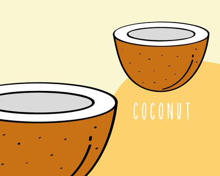 coconut fruit tropical fresh natural on colored background vector illustration