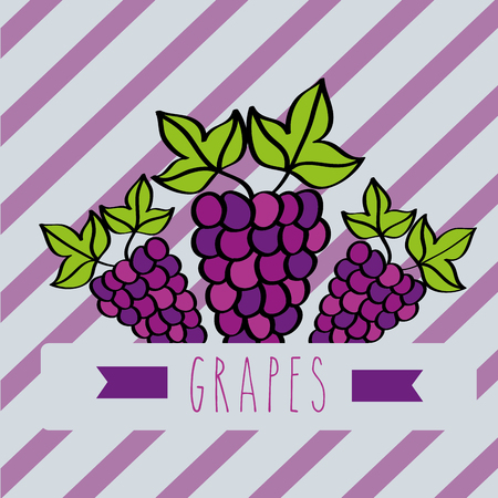 striped background with delicious fresh grapes vector illustration Illustration