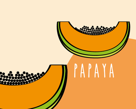 papaya fruit tropical fresh natural on colored background vector illustration Ilustração Vetorial