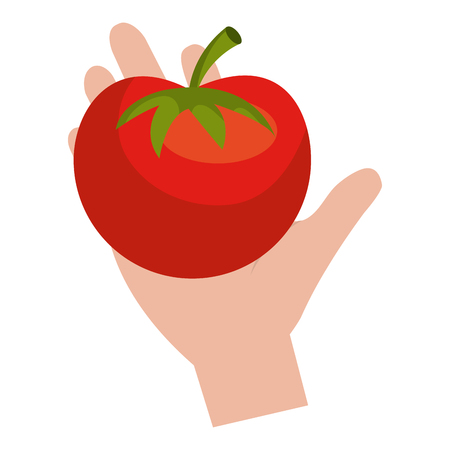 hand with fresh tomato vector illustration design