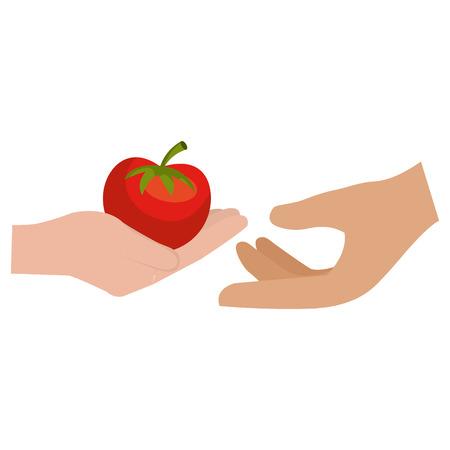 hands with fresh tomato vector illustration design