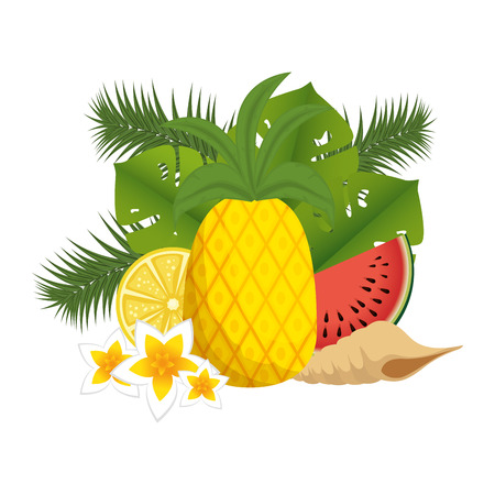 watermelon sliced with pineapple and snail shell vector illustration design