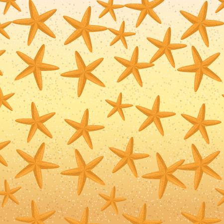 starfish animal beach pattern background vector illustration design