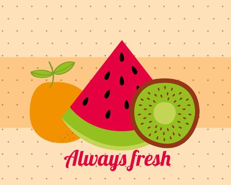 always fresh nature nutrition fruits watermelon kiwi and orange vector illustration