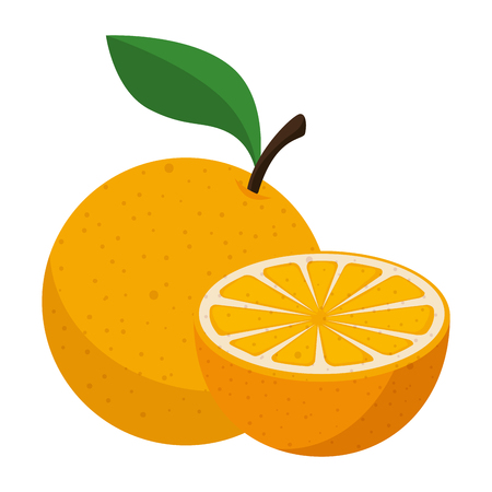 fresh oranges healthy food vector illustration design