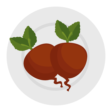 fresh beets in dish vegetarian food vector illustration design