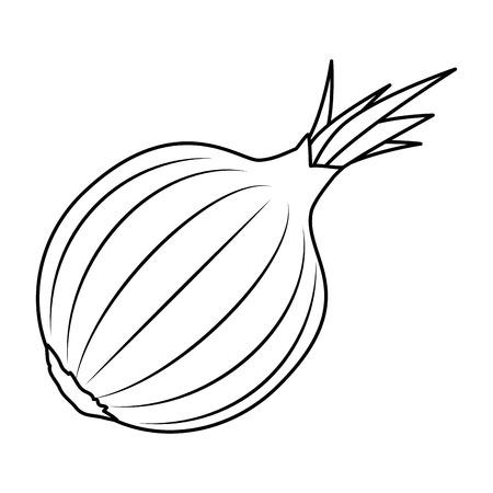 fresh onion vegetarian food vector illustration design 스톡 콘텐츠 - 111927755