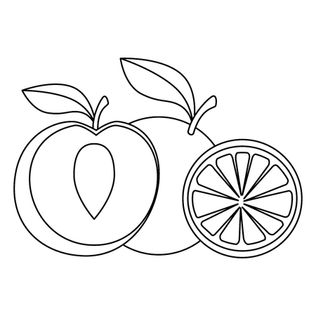 fresh peach and orange healthy food vector illustration design Ilustração