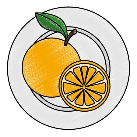 fresh oranges in dish healthy food vector illustration design