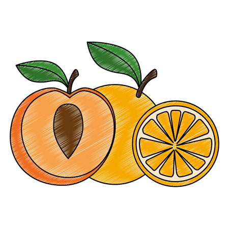 fresh peach and orange healthy food vector illustration design Stock Illustratie
