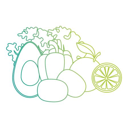 vegetables and food healthy food vector illustration design