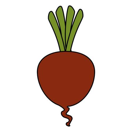 fresh beet vegetarian food vector illustration design Stock Vector - 106554894
