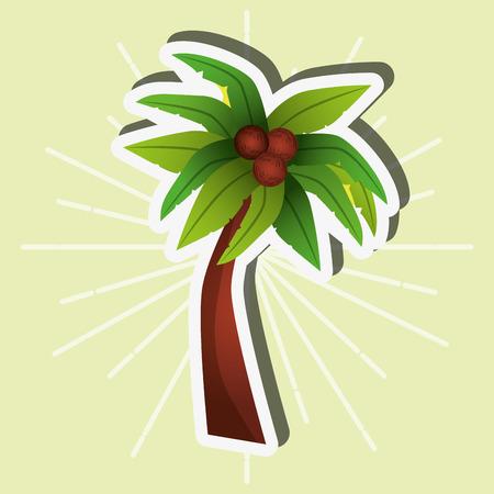 palm tree coconut tropical botanical vector illustration
