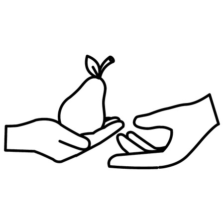 hands with fresh pear vector illustration design