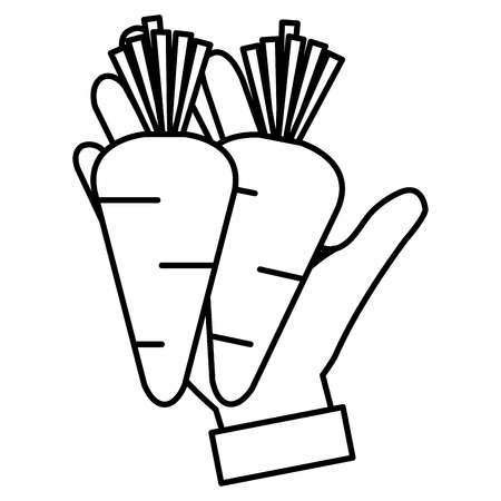 hands with fresh carrots vector illustration design