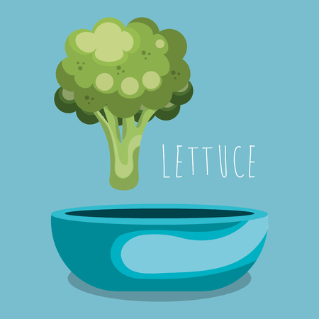 fresh lettuce in bowl vegetarian food vector illustration design Illustration