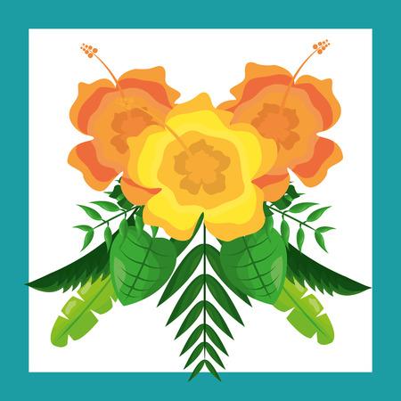 beautiful arrangement flowers ornament tropical leaves vector illustration Иллюстрация