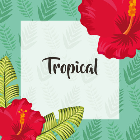 tropical leaves frame sign flowers plants vector illustration