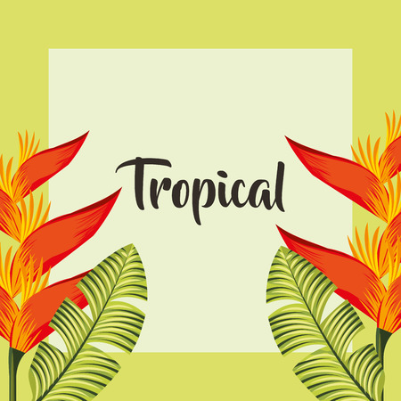 tropical leaves frame sign heliconias plants vector illustration