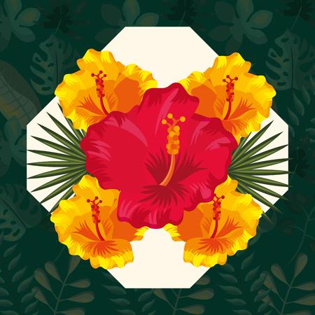 tropical leaves frame flowers  hibiscus flower plants frame vector illustration Stock Illustratie