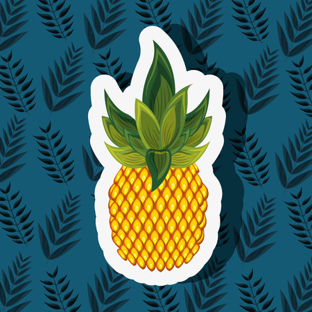 pineapple fruit leaves background vector illustration