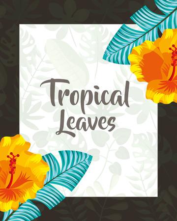 tropical leaves sign frame flower vector illustration