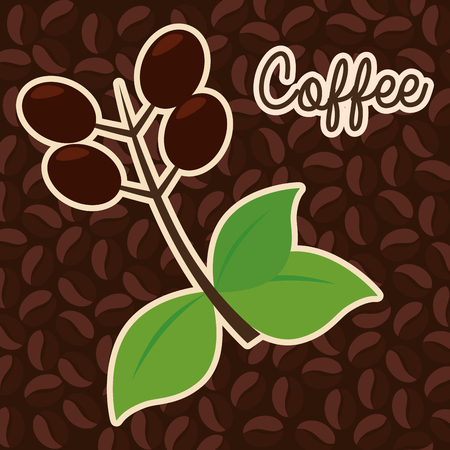 delicious coffee plant poster vector illustration design