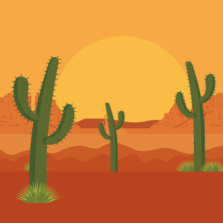 desert with cactus scene vector illustration design