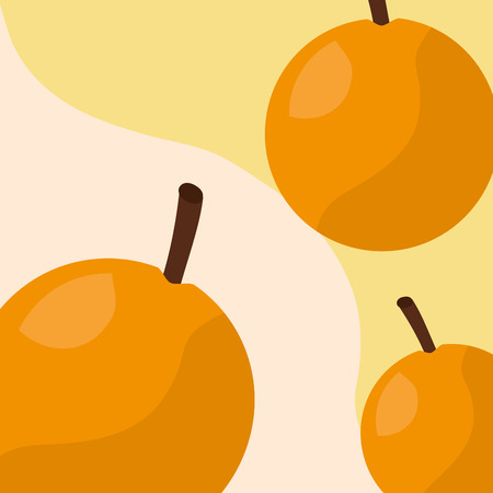 fruit fresh natural orange nature background vector illustration 일러스트