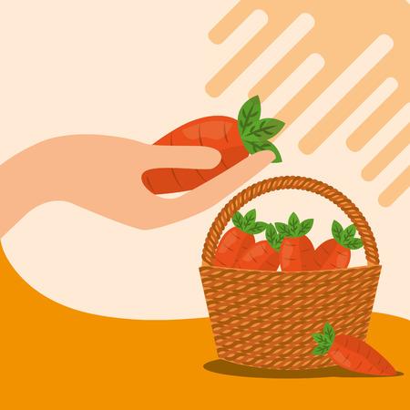 vegetables fresh natural carrot basket vector illustration