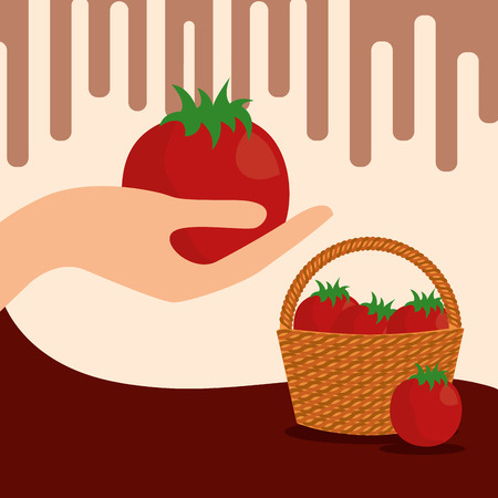 vegetables fresh natural tomatoes basket vector illustration