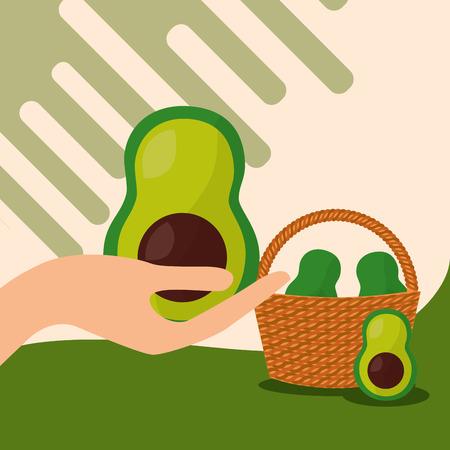 vegetables fresh natural avocados basket vector illustration Illustration