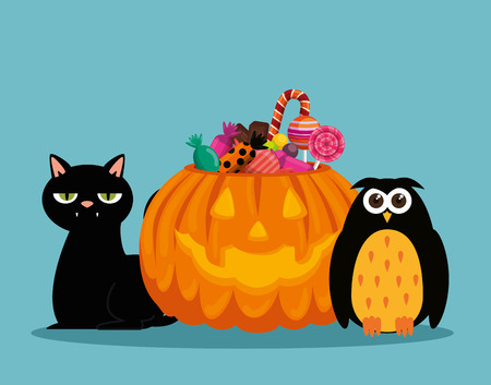 halloween card with pumpkin and owl vector illustration design Çizim
