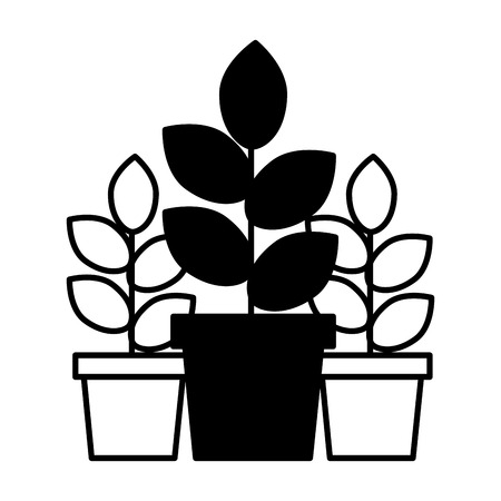 potted plants natural decoration ornament vector illustration Banque d'images - 109719975