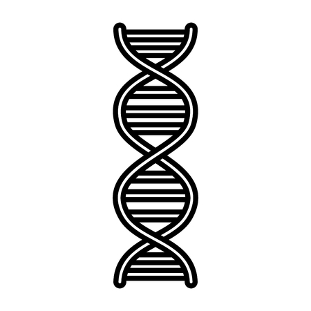 dna molecule isolated icon vector illustration design