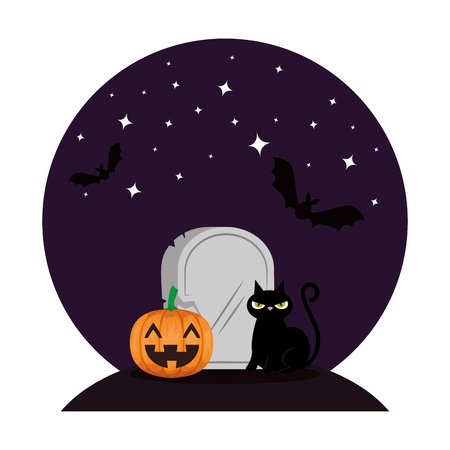 halloween black cat with pumpkin in the night vector illustration design
